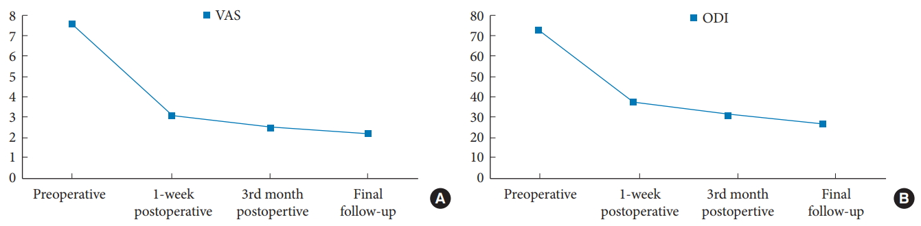 Feasibility of Full Endoscopic Spine Surgery in Patients Over the
